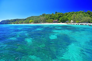 Phi Phi island tour by speedboat promotion price